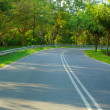 Empty road — Stock Photo #12619272
