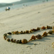 Heart from seashells on sand beach — Stock Photo #12619313