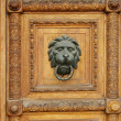 Wooden door with lion-head door-knob - Stock Photo