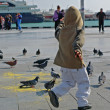Stock Photo: Boy running between pigeons