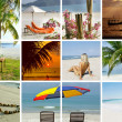Summertime shots collection — Foto Stock