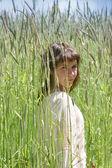 高い草原の少女 — ストック写真
