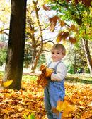 Rapaz jovem com folhas de outono nas mãos — Foto Stock