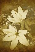 Oude-stijl bloemen achtergrond — Stockfoto