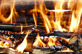 Burning woods in fireplace — Stock Photo