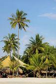 Kavárna na písčité pláži v tropech — Stock fotografie