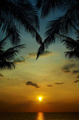 Sunset in tropics — 图库照片