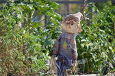 Spaventapasseri in giardino — Foto Stock