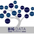 Big data fundaments tree — Stock Photo