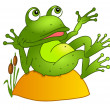 Cartoon frog lying on a rock. — Stock Photo