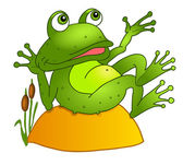 Cartoon frog lying on a rock. — 图库照片