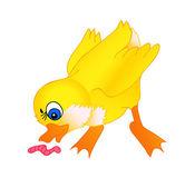 Little duck cartoon — Stock Vector