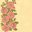 Flowers, leaves and buds of pink roses. Painted in the old style. Suitable background for text and postcards — Stock Vector