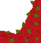 White background for a card decorated with roses and text — Stock Vector