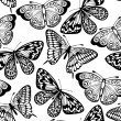 Beautiful seamless background of butterflies black and white colors — Stock Vector #22600803