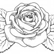 Beautiful rose in the style of black and white engraving. — Stock Vector #25574783