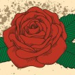 Rose tattoo on the old background with blots. In the old-style — Image vectorielle