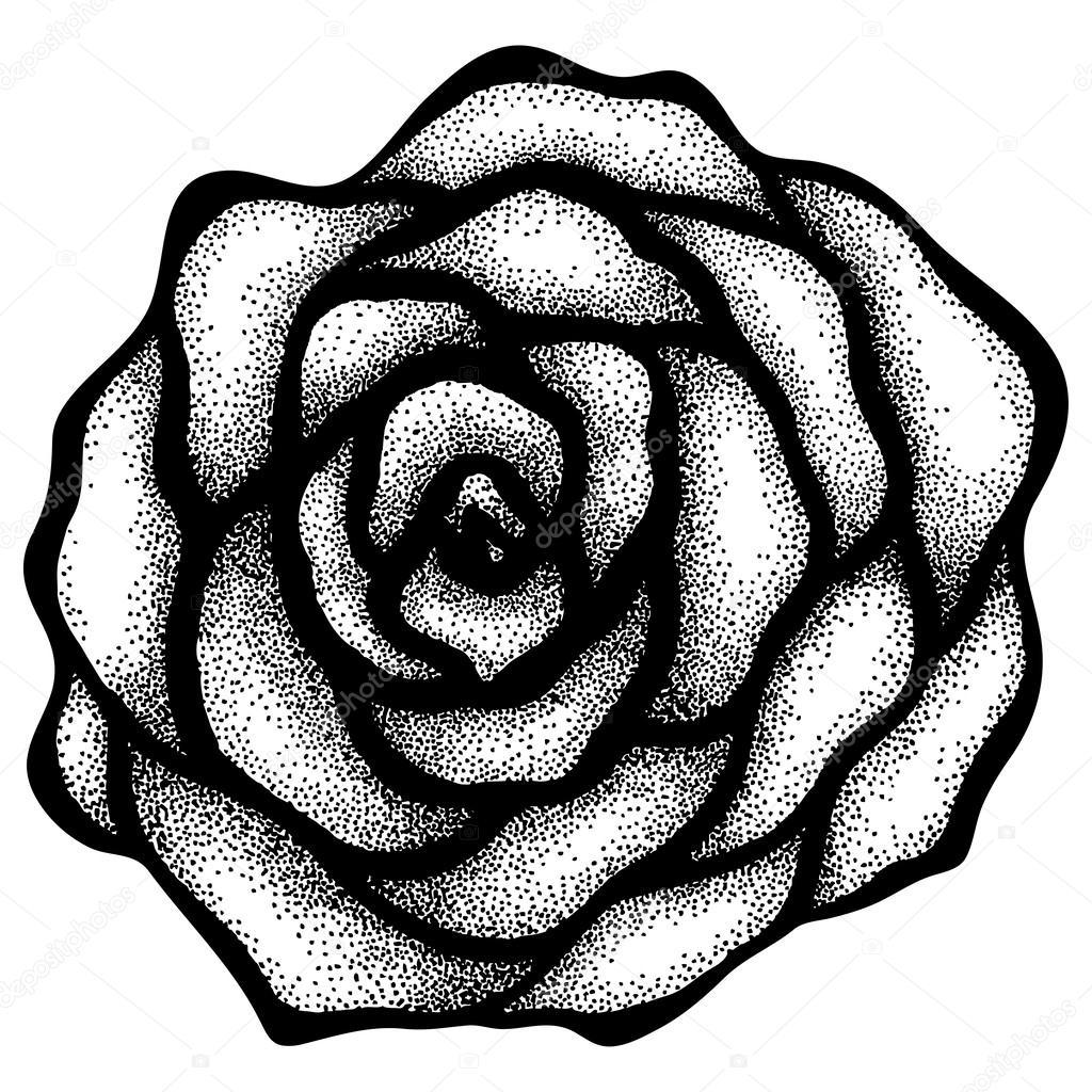 рисунок розы тату