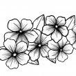 Branch of a blossoming tree in graphic black white style, drawing by hand. Symbol of spring — Stock Vector #38628665