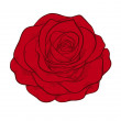Stock Vector: Beautiful red rose isolated in graphic style