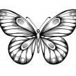 Beautiful black and white butterfly — Stock Vector