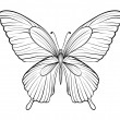 Graphic black and white butterfly. Hand-drawn contour lines and strokes. one isolated on white — Stock Vector