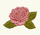 Beautiful rose bud with leaves painted in watercolor style — Stock Vector