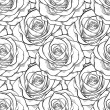 Beautiful black and white seamless pattern in roses with contours. — Stock Vector #43175083