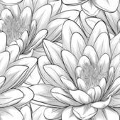 Svarta och vita seamless mönster med lotusblommor. — Stockvektor