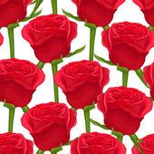 美丽无缝背景白色衬底上的红玫瑰. — 图库矢量图片