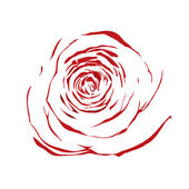 Beautiful abstract sketch red rose isolated on white background. — Stock Vector