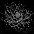 Black and white lotus flower painted in graphic style isolated — Stock Vector #50104275