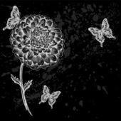 漂亮的黑白花蝴蝶. — 图库矢量图片