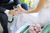 Bride and groom with rings — Stock Photo