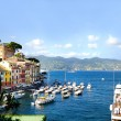 Portofino, Italy — Stock Photo #22895142