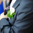 Groom with passports — Stock Photo