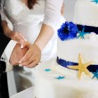 Groom and bride hands cutting wedding cake — Stock Photo