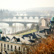 Panoramic view of Charles bridge on Vltava, Prague — Stock Photo #23893643
