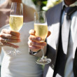 Bride and groom making a toast with champagne — Stock Photo #28654229