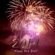 Happy new year 2014 - firework by night — Stock Photo