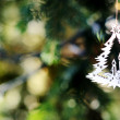 Christmas tree decoration on the branches fir — Stock Photo