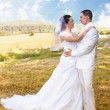 Bride and Groom standing in pretty landscape — Stock Photo