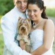 Stock Photo: Bride and Groom similing with dog
