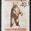 Bear postage stamp — Stock Photo #12226147