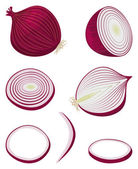 Red onion — Stock Vector
