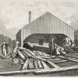 Stock Photo: Railway sleepers preparing