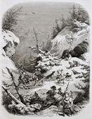猎熊 — 图库照片