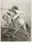 Abyssinian knight — Stock Photo