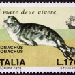 Mediterranean monk seal postage stamp — Stock Photo