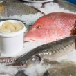Variety of fish and seafood on market ice display — Stock Photo